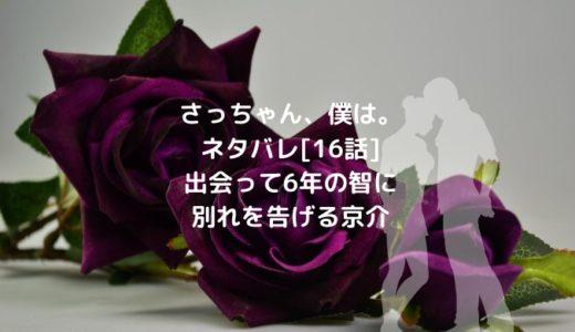 さっちゃん、僕は。ネタバレ[16話]出会って6年の智に別れを告げる京介