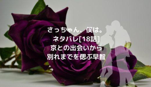 さっちゃん、僕は。ネタバレ[18話]京との出会いから別れまでを偲ぶ早智