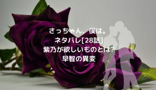 さっちゃん、僕は。ネタバレ[28話]紫乃が欲しいものとは?早智の異変