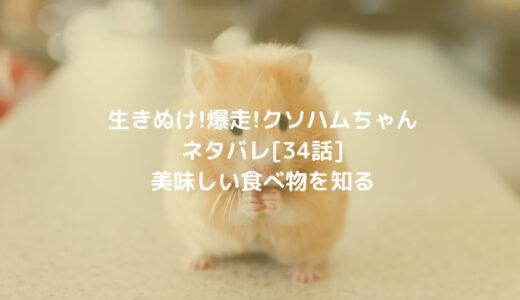 生きぬけ!爆走!クソハムちゃんネタバレ[34話]美味しい食べ物を知る
